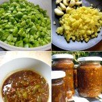 Das Grüne Tomaten Rezept in 4 Abschnitten