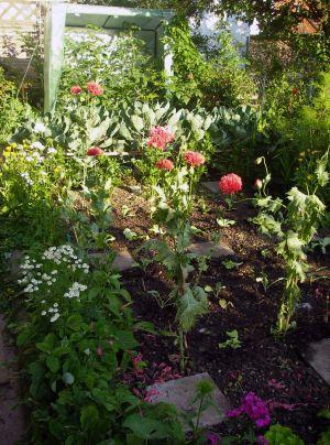 Blumen und Gemüse im Freisinger Gartenblog