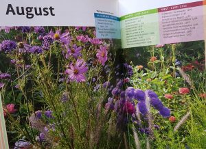 Blick ins Buch mit Gartentipps des Gartenkalenders und Gartenratgebers