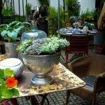 P1200827 Gartentage 2017 sitzgruppe 150x150 - Die 22. internationalen Freisinger Gartentage heißen Slowenien willkommen - gartenliteratur, blumen-im-garten