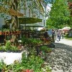 P1200845 Gartentage 2017 kraeuter 150x150 - Die 22. internationalen Freisinger Gartentage heißen Slowenien willkommen - gartenliteratur, blumen-im-garten