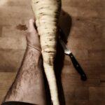 Eine Hand hält die große Pastinake