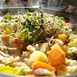 Nudeln mit gewürfeltem Gemüse in einem Teller. Obenauf die Keimsprossen