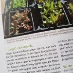 Aufgeschlagene Seite des Buchs: Basiswissen für Selbstversorger aus Biogärten