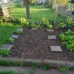 Beet 8 Stangenbohnen 150x150 - Gemüsebeet planen für Mischkulturen - gartenpraxis, gartenplanung, aktuell