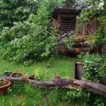 Hagel im Garten Mai 2018 xx 20180515 191433 150x150 - Gartentagebuch 1. Halbjahr 2018 - gartentagebuch-2018