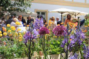 Im Vordergrund Blumen eines Ausstellers der Freisinger Gartentage, im Hintergrund Besucher