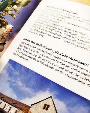 Seite aus dem Heilpflanzen Buch zur Entwicklung der Volksheilkunde zum Arzneimittel
