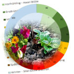 Jahreskreis mit bunten Feldern