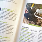 Gartenpraxis - Checklisten