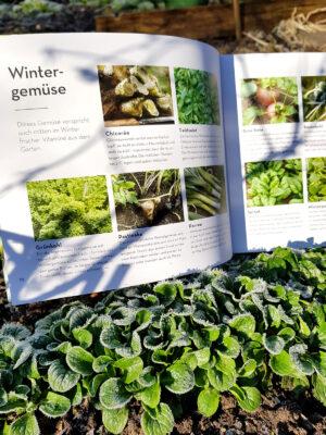 Aufgeschlagenes Buch im gefrorenen Feldsalat mit Überssichtsseite zur Gartenpraxis bei Wintergemüse