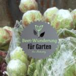 Logo von Gartenblog-Beetwunderung.de