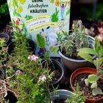 Gartenkräuter: Buchcover und Stecklinge